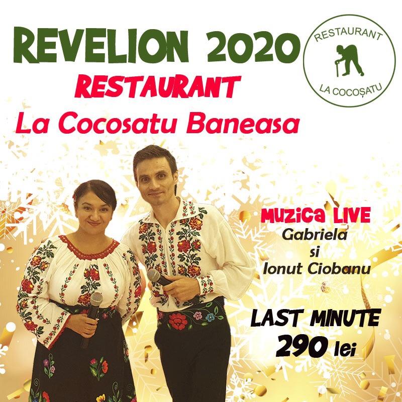 Revelion Românesc La Cocosatu' – preț special 290 lei